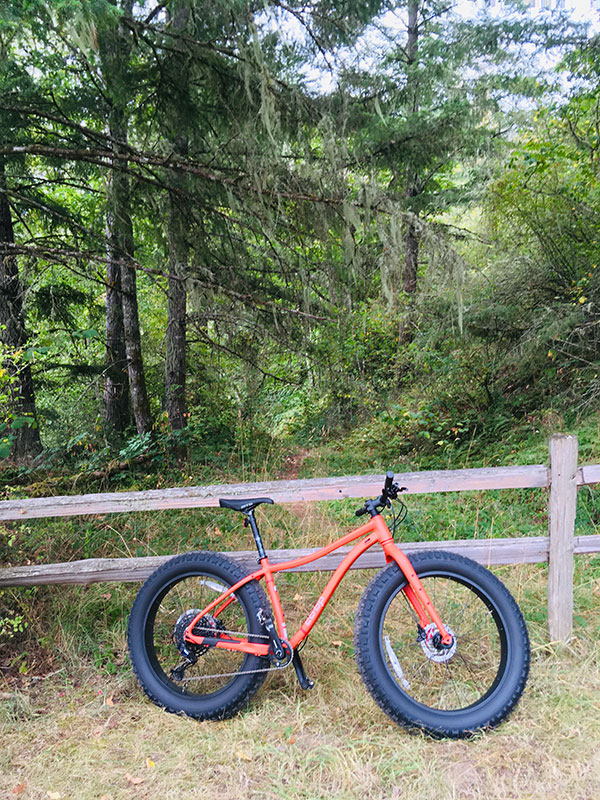 Orange Co-op fat tire mountain bike leaning on a fence in the woods